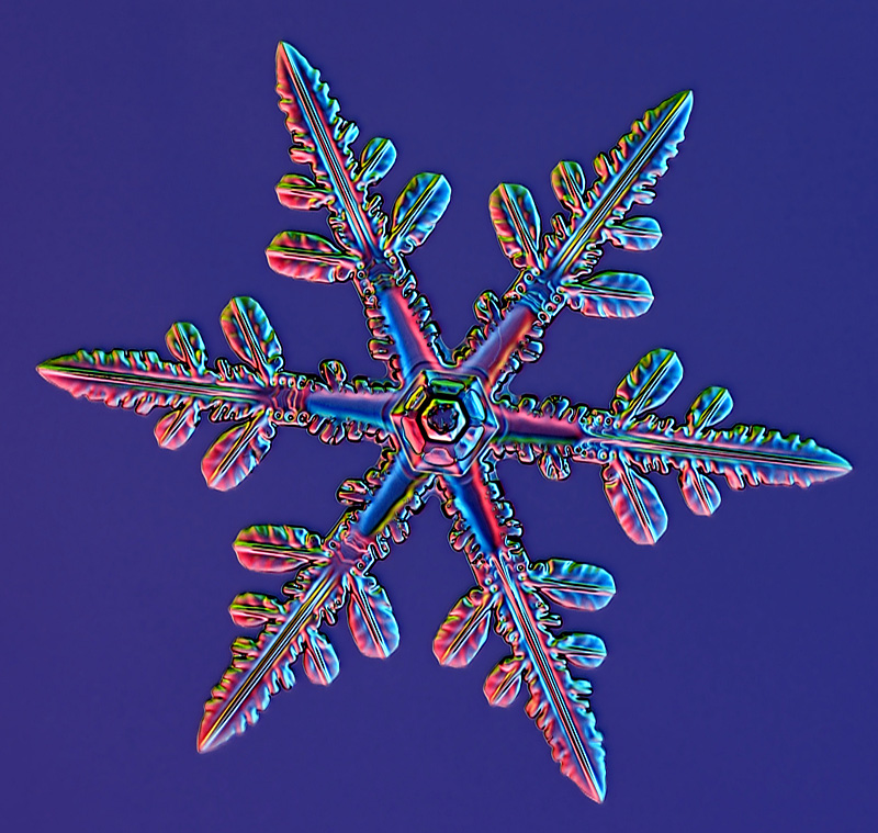 Magnified snowflake photo by Kenneth Libbrecht. Source: scientificamerican.com